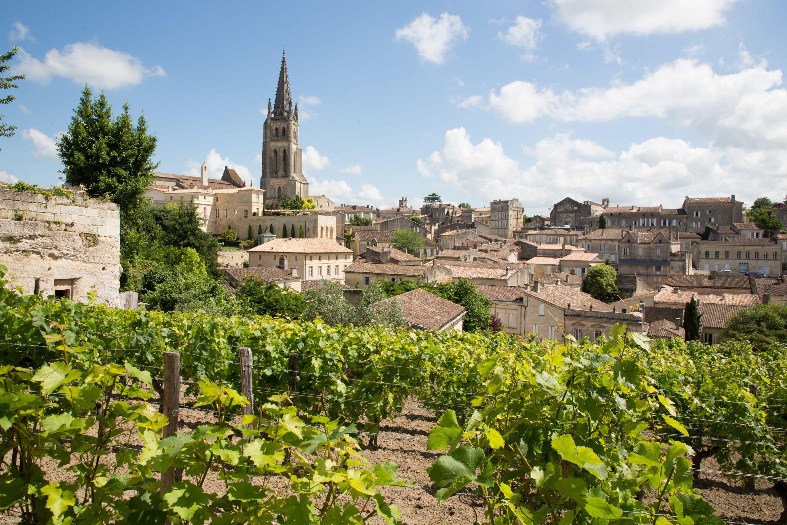 Vino, morje & ostrige - Bordeaux z letalom 4 dni