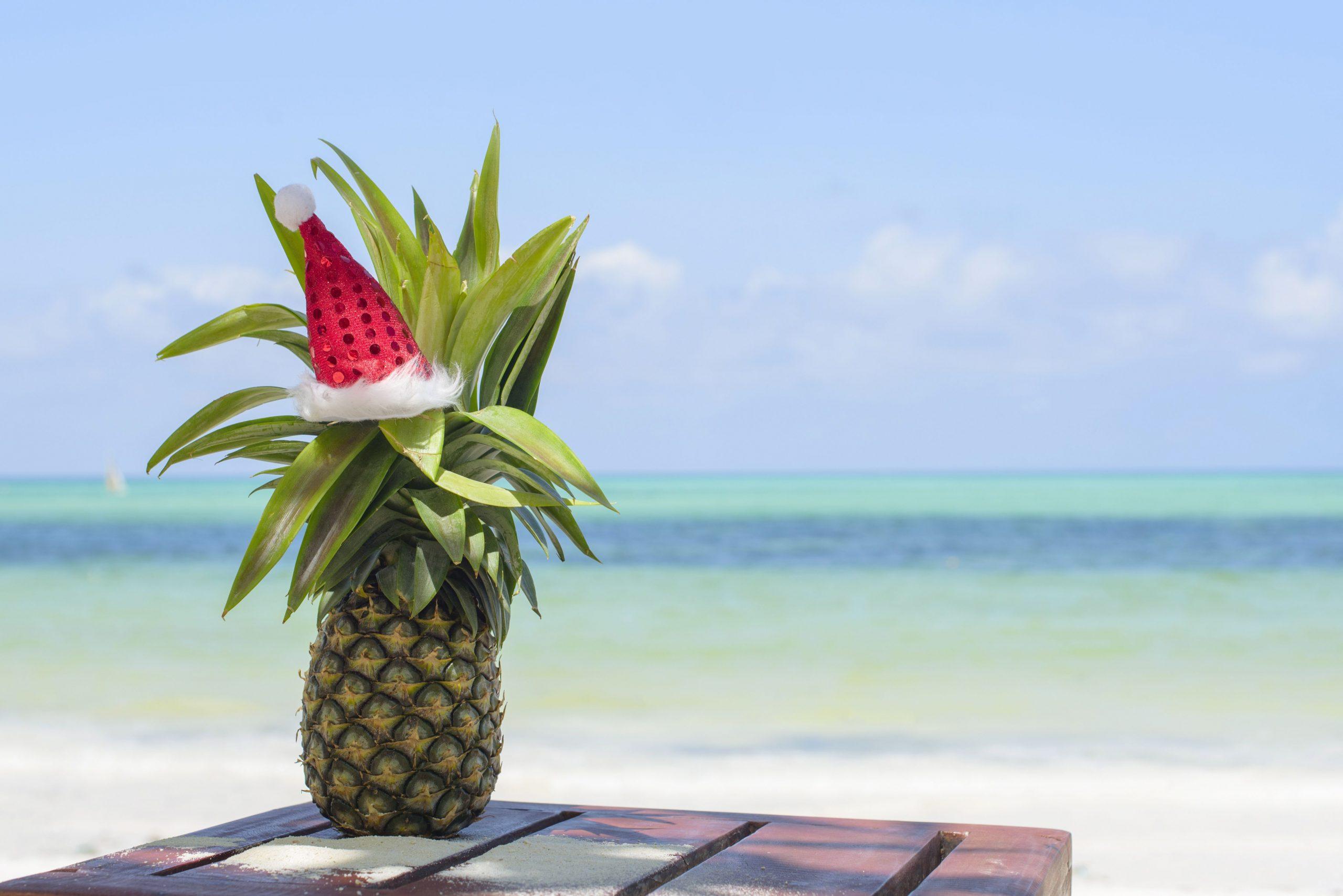 Hotel ZURI ZANZIBAR HOTEL & RESORT 5*, BGW 1/2 VRT, POL,  Novoletni Zanzibar 10 dni
